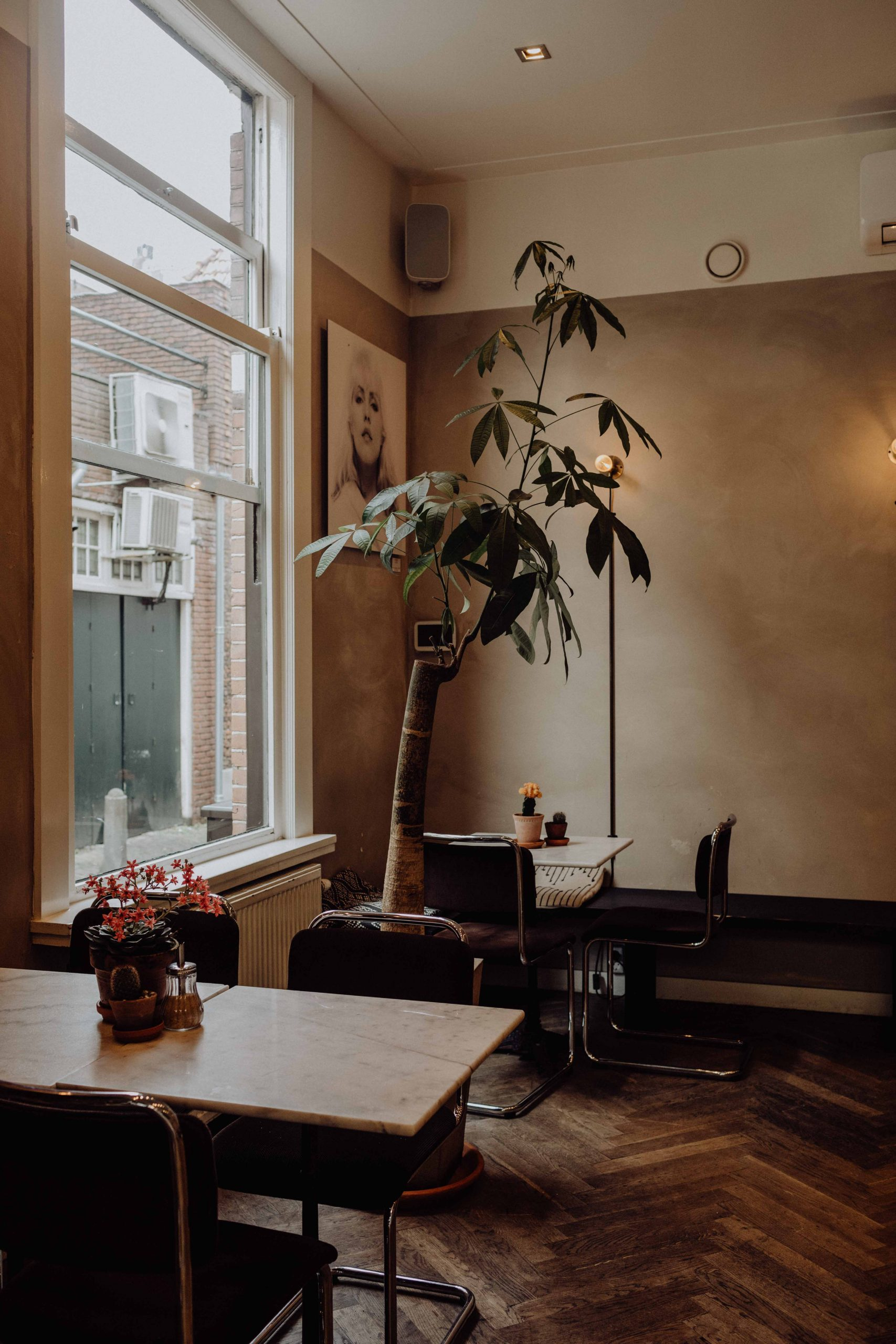 Mogador-haarlem-koffiezaak